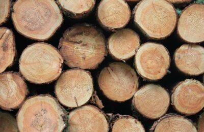 Beter hout beter verbranden